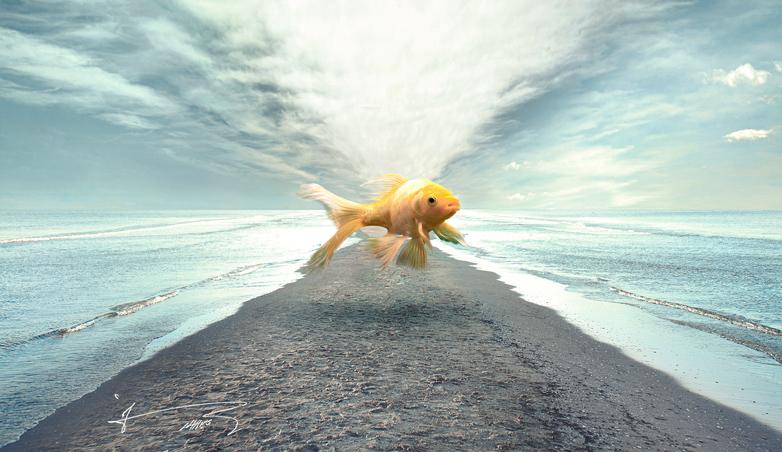 تصویرسازی فتومونتاژ زهیر عابدی - 09